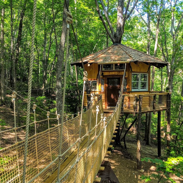 Dogs Stay Free! Treehouse Stamish Castle