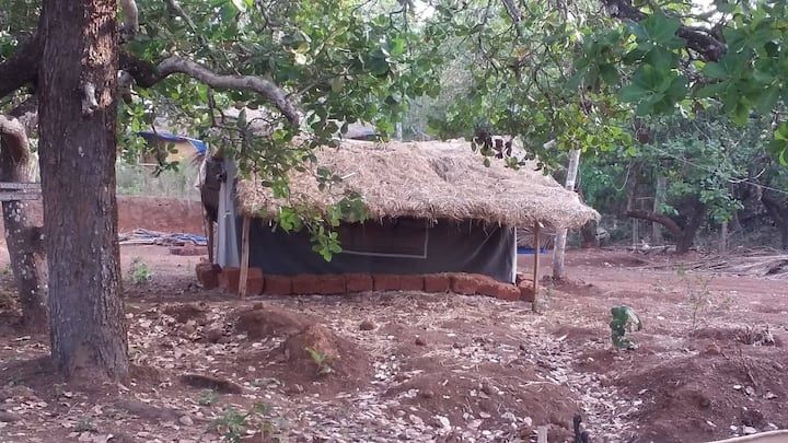 Dormitory for 4 people, close to  Agonda Beach