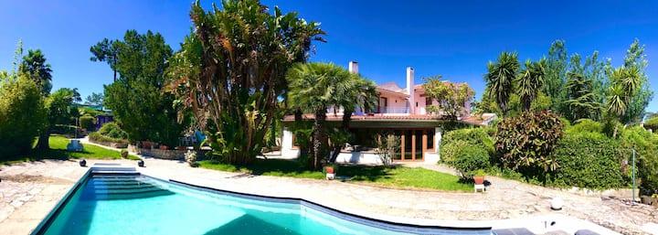 Cedars Guest House - beach & Lisbon