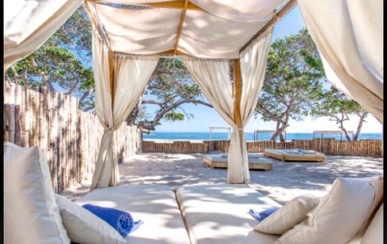 Coasta Dorado Luxury Beach Suites