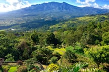 "Guest: ""Amazing place, the view of Volcan Baru is terrific""   Vista Volcan, a luxurious and tranquil mountain retreat, 10 minutes from downtown Boquete. An experience in itself, it is the ideal base from which to experience the wonders of Chiriqui."