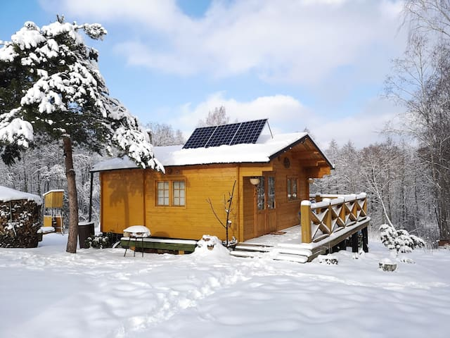 Cosy Off Grid Cabin House