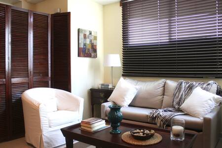 Beautiful  centric  apartment close to Blue Mall - Saint-Domingue