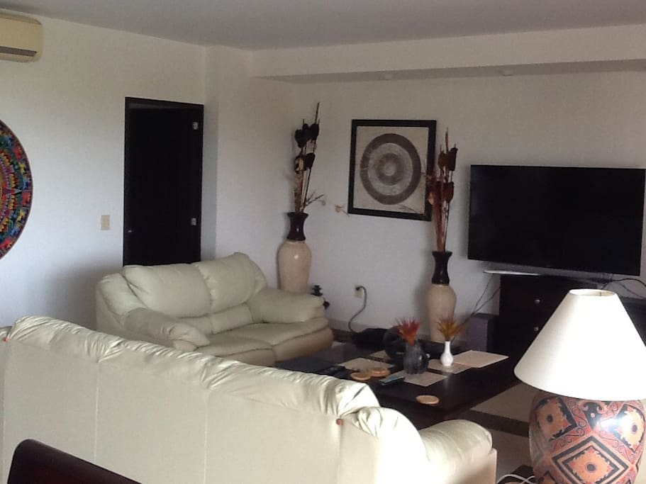 Living room area with 60 inch tv