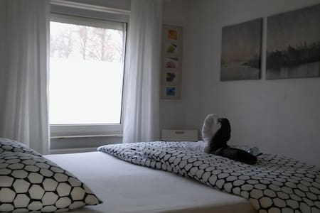 GREAT kingsize boxspring in a cozy bedroom - Maastricht - Dům