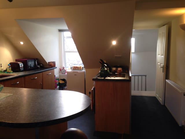 Very central, open plan attic flat - Ayr