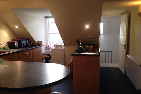Very central, open plan attic flat - Ayr - Loft