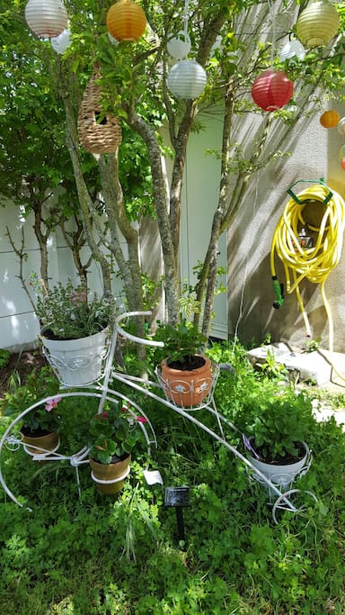 Un jardin qui amusera les grands et les petits. Pourquoi pas en profiter pour s'initier au jardinage ? Menthe et thym pour assaisonner vos plats.