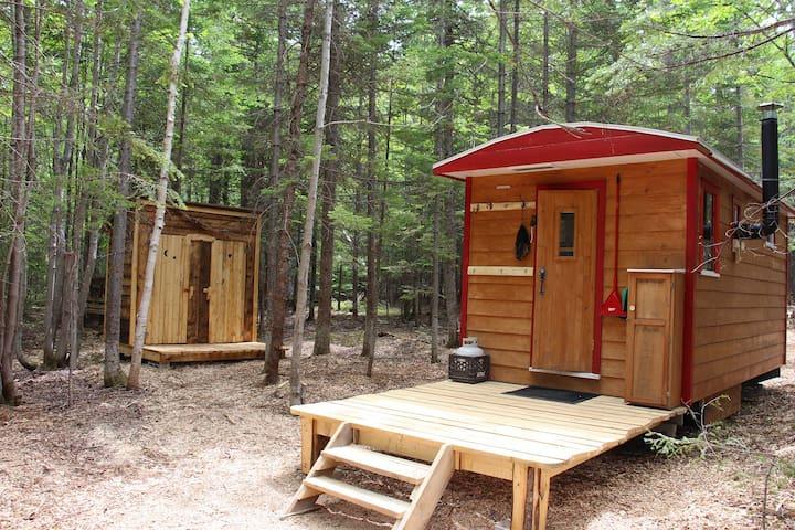 Jolie Micro-maison en forêt