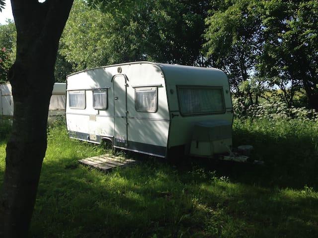 Schnuckliger Wohnwagen an der Ostsee - Oldenburg in Holstein - Asuntoauto