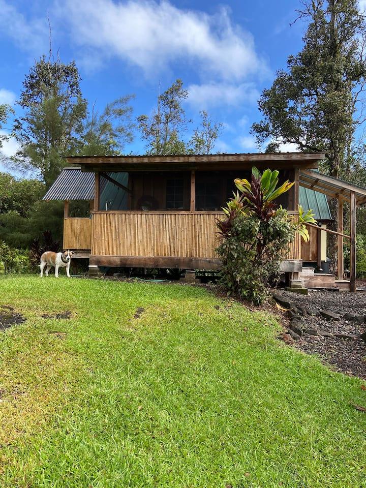 A Tropical Garden Suite