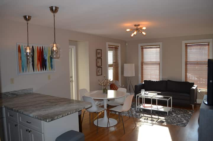 Sunny & Cozy 2 BR Apt in Boston. 15 min to DWTN
