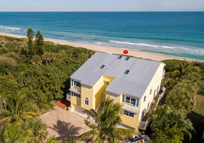 The Turtle Spot - Green - Beachfront Unit