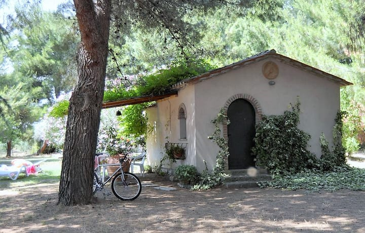 cottage Edera in campagna a Cecina