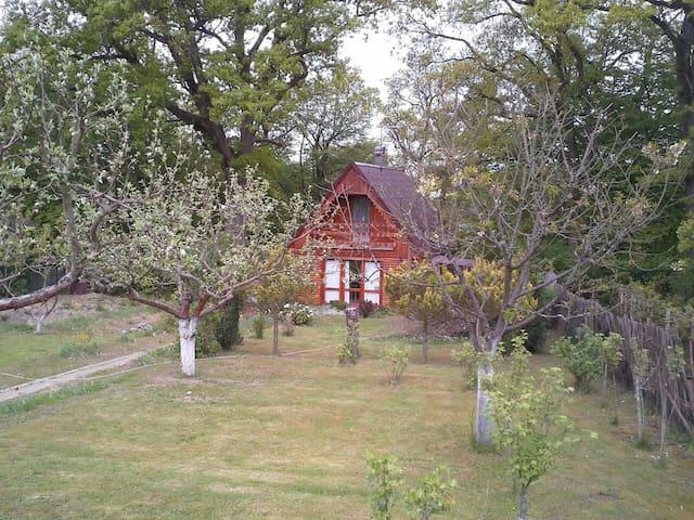 Pěkná dřevěná chata u přehrady Hracholusky