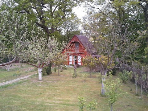 Nice cozy wooden cottage near Hracholusky dam
