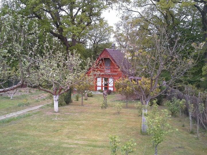 Pěkná útulná dřevěná chata u přehrady Hracholusky