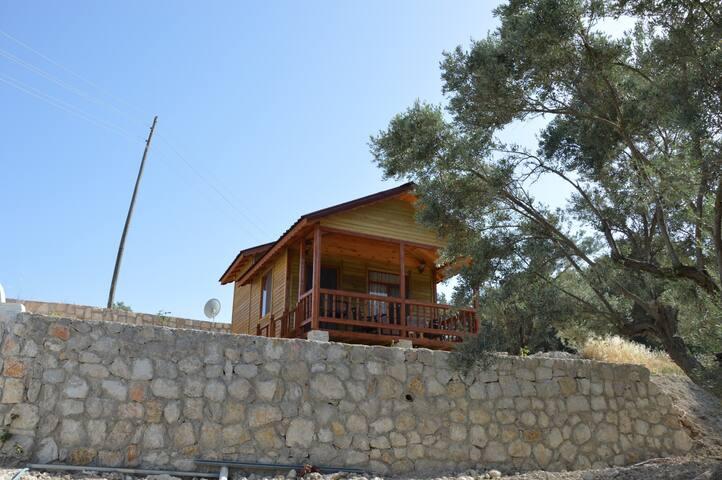 Maki Boyabağı Bungalow/ Defne Evi