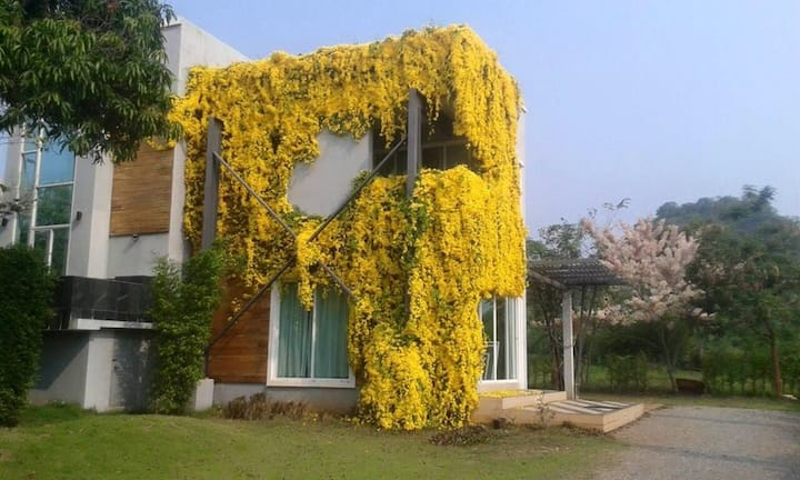 The Loft Khaoyai