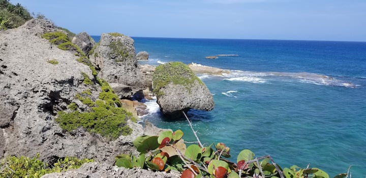 #2 Clean-Affordable, Steps to Jobos & Shack beach