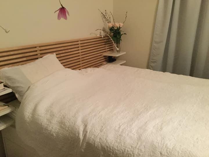 Rom med eget bad for kvinne, Trondheim , Solsiden