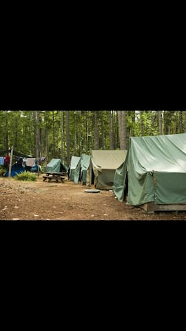 A S Tents and Tracking with Fun and Food