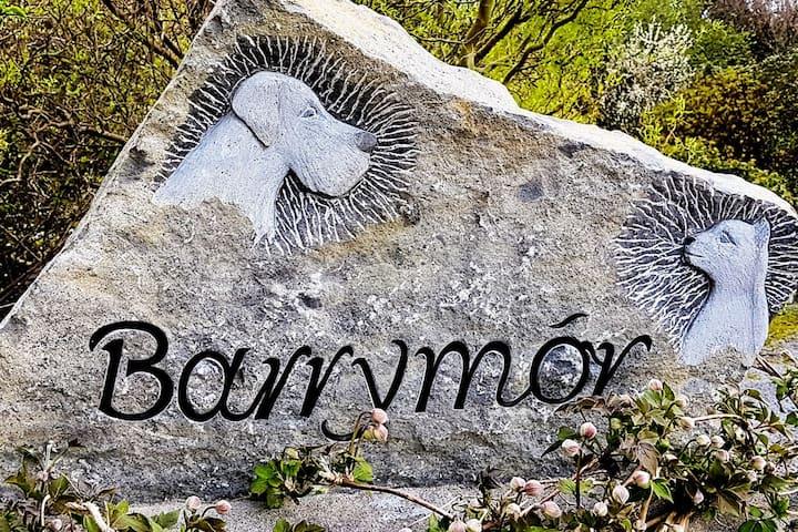 Barrymór