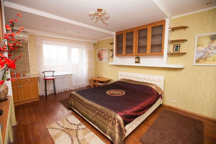 1-Room apartment at Soborniy Maidan