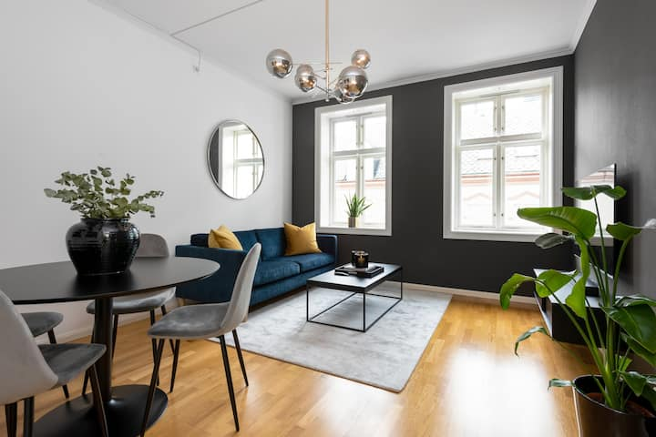 Stylish 2 BR apartment with excellent location