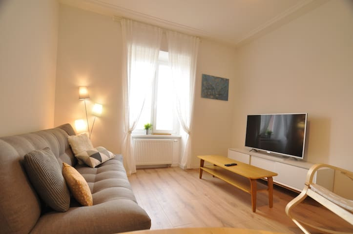 Charming flat number 1 in Huningue