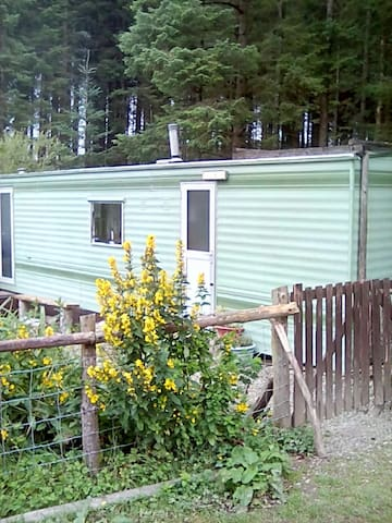 Caravan on smallholding in forest