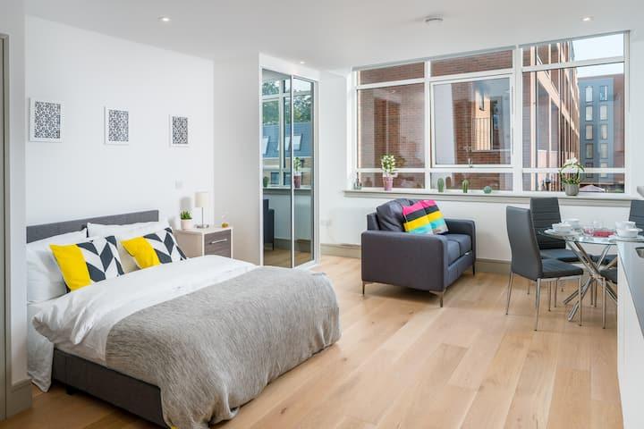 Elegant Studio flat in Seven Sisters, London