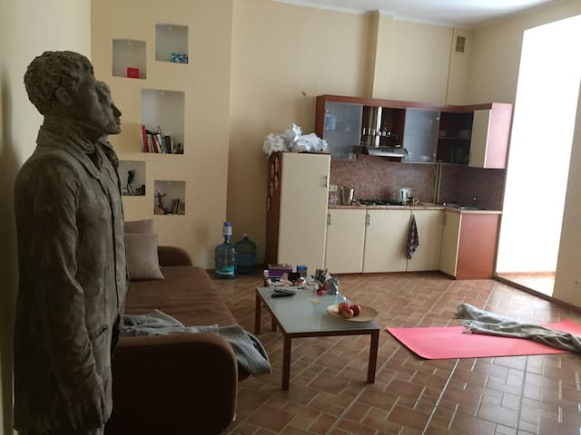 Apartment rent in the center of Kiev
