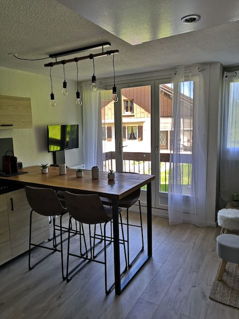 Appartement cosy ski au pied 5 couchages