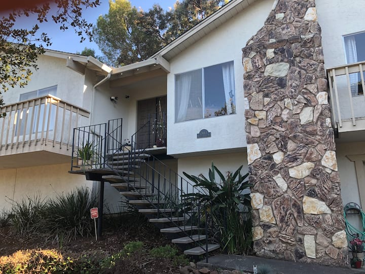Private, Charming Room in Beautiful Belmont Hills