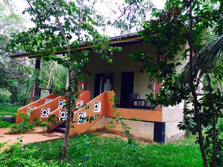 Apsaras Resort & Restaurant - Sigiriya