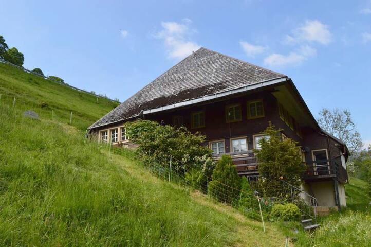 """ STÜBENBÄCHLEHOF"" - Todtnau - Apartament"