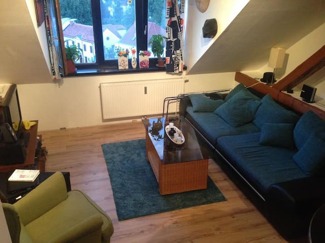 Beautiful own room, wifi and close to city center - Graz - Wohnung