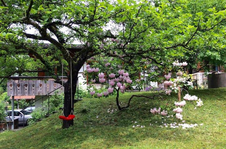 Villa Floriberta • Ferienwohnung • Chalet