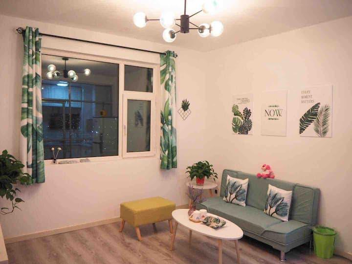 【Zoe的小屋】市中心一室一厅 ins北欧风 全新舒适便捷