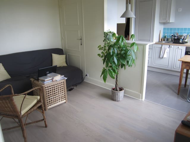 Appartement de charme avec vue sur la Mayenne - Laval - Flat