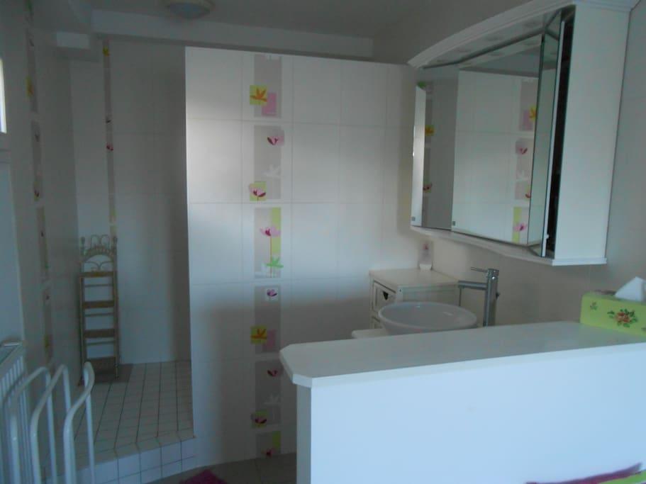 location chambre avec salle de bain privative houses for rent in le mans pays de la loire france. Black Bedroom Furniture Sets. Home Design Ideas