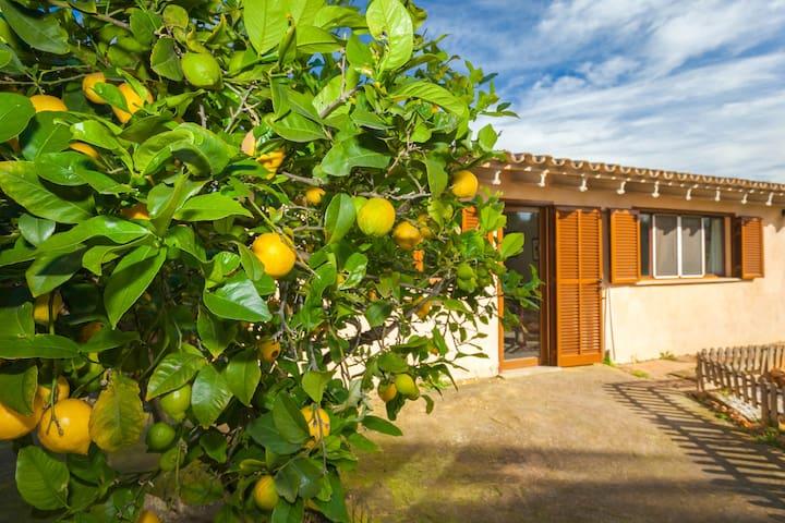 Casa anexa en Villa Mallorquina - Santa Eugènia - Guesthouse