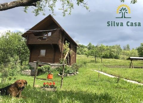 Silva Casa