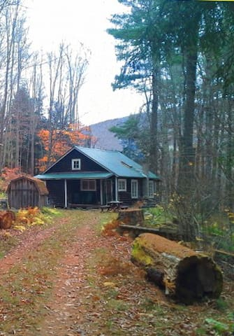 Mink Hollow Cottage - West Kill