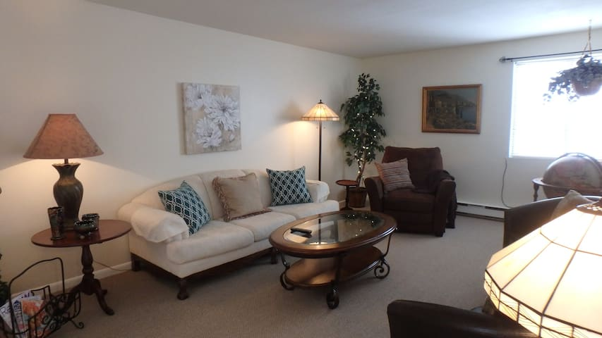 Nicely furnished  1-bedroom condo.. - Baldwinsville - Daire