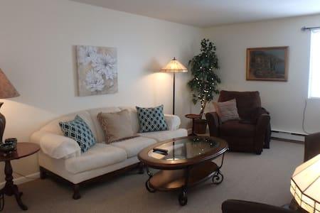 Nicely furnished  1-bedroom condo.. - Baldwinsville - Apartamento