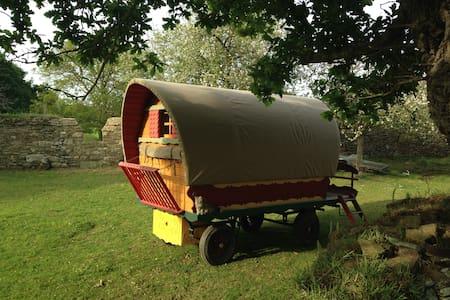 Confortable roulotte en bois à l'ombre du chêne - Saint-Laurent
