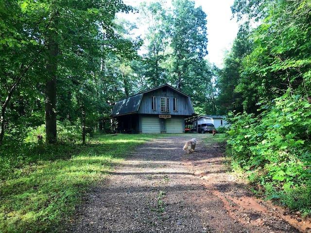 Rustic Persimmon Treehouse near Clayton, GA