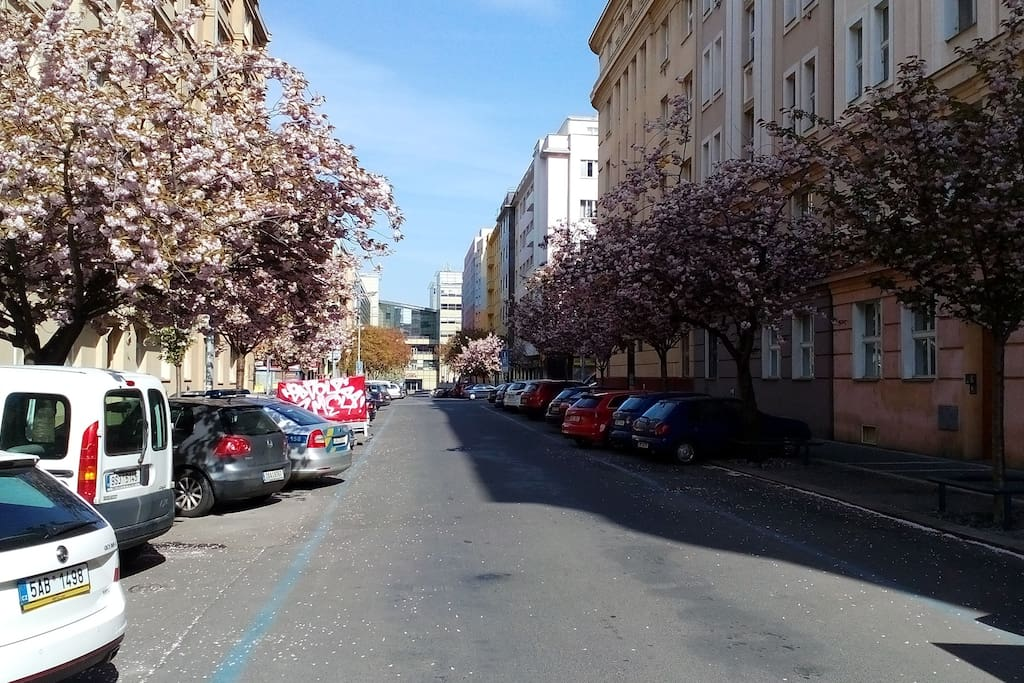 Towards Jičinská street nearby our house and Mall Flora and gate to Metro line A Flora Station, April 2017